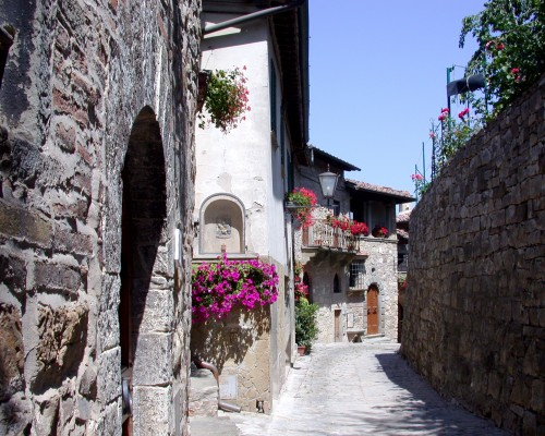 Houses & Cobblestone Street between two Walls
