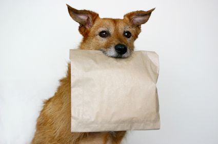 Thanks for the doggy bag!