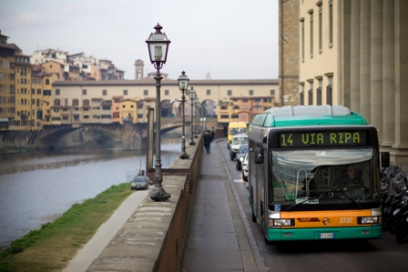 Buses in the Renaissance City